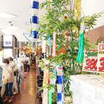 160624_elle6_tanabata02